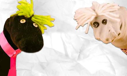 Zappelin - poppenkast met sokken