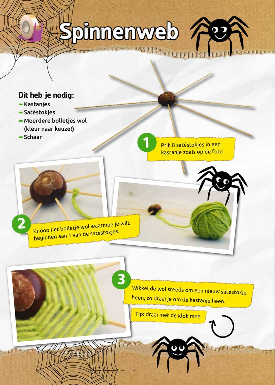 Zappelin - spinnenweb