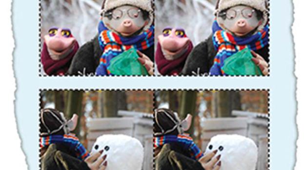 Spelletje: Koekeloere - winter memory
