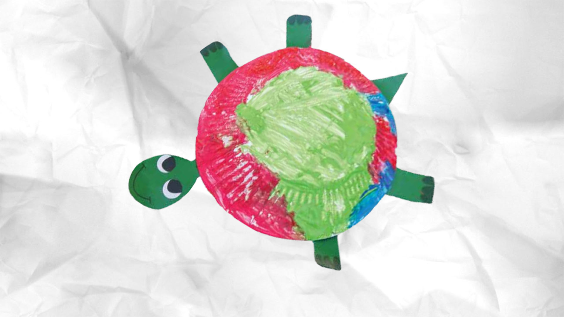 Zappelin - Schildpad