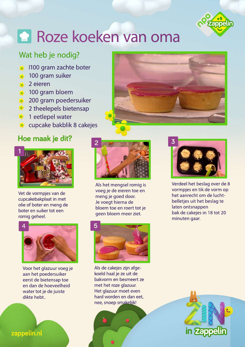 Zin in Zappelin - roze koeken