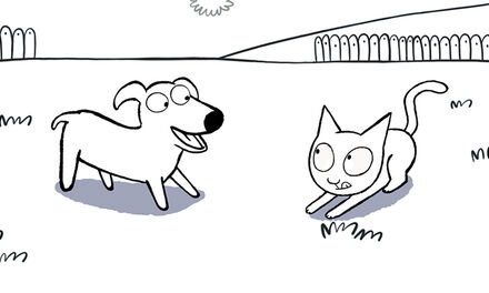 Simon - huisdieren