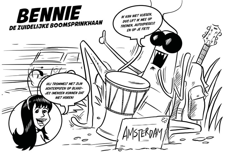 Missie Voelspriet - Bennie de Zuidelijke Boomsprinkhaan