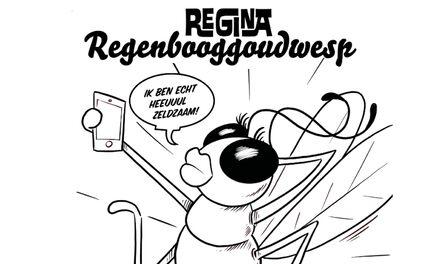 Missie Voelspriet - Regina de Regenbooggoudwesp