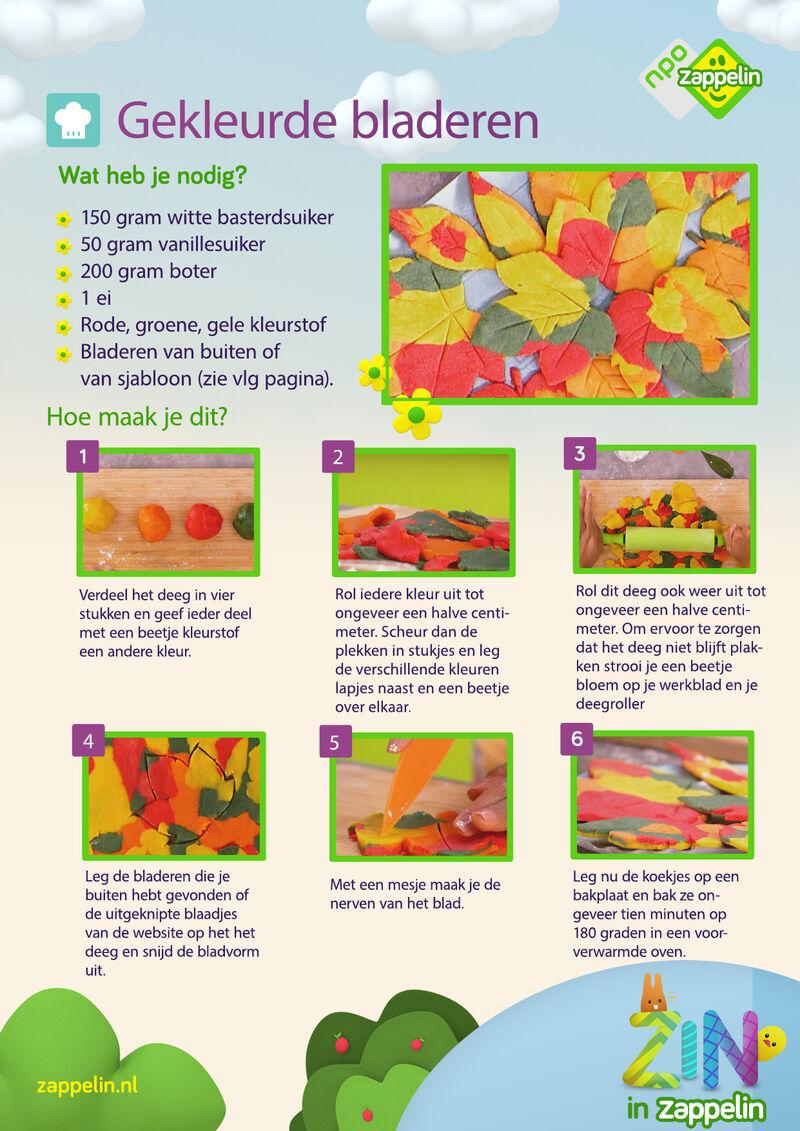 Zin in Zappelin - Gekleurde bladeren
