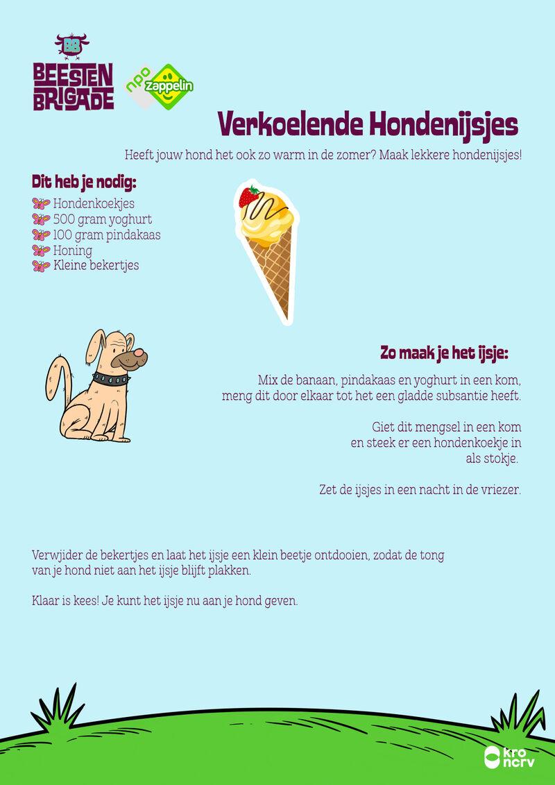 Hondenijsjes maken