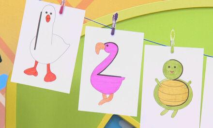 Zin in Zappelin - Flamingo - 2