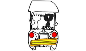 Pim en Pom auto